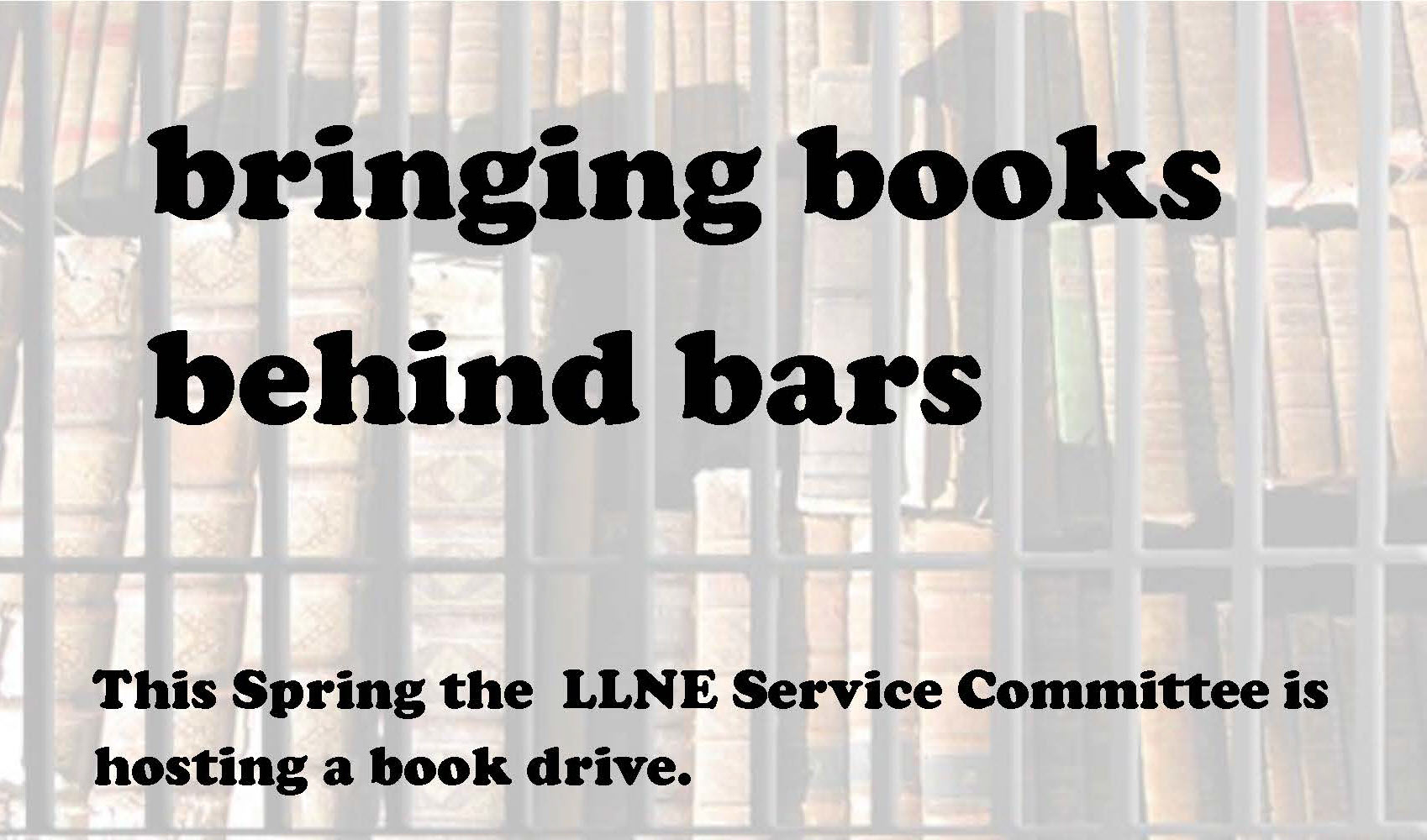 LLNE Spring Service Project - Copy